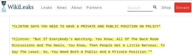 wikileaks-public-and-private-position
